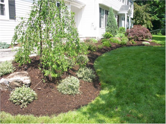 Landscape ideas for a small front yard ehow rachael edwards for Small front of house landscaping